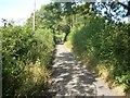 SP9207 : Parrott's Lane by michael