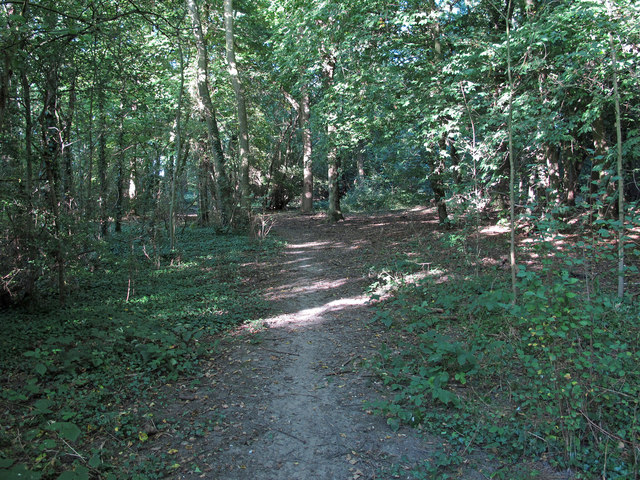Path in Warwick Wood
