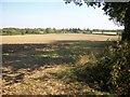SP9006 : Farmland at Old Brun's Farm by michael