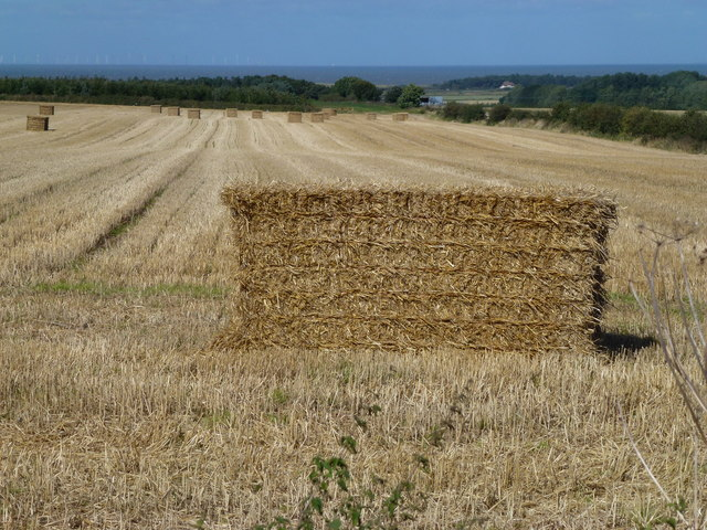 Baled straw off Green Bank