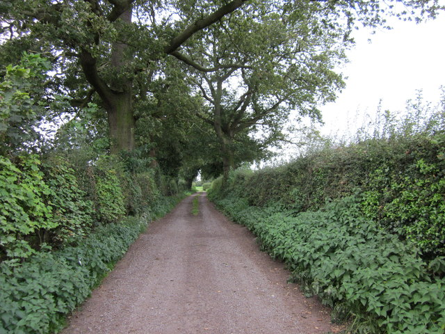 Padge Lane near Fuller's Moor