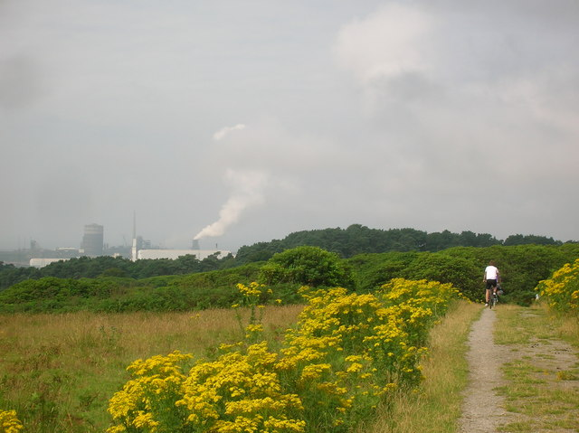 Margam Steel Works from Margam Country Park