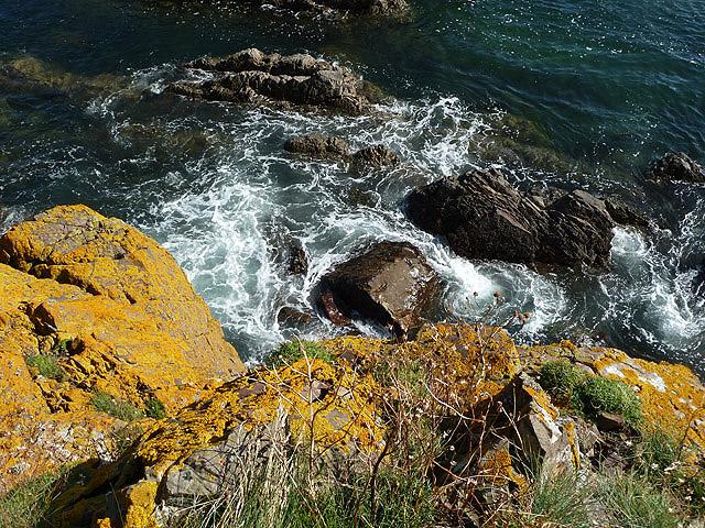 Berwickshire coastal rocks