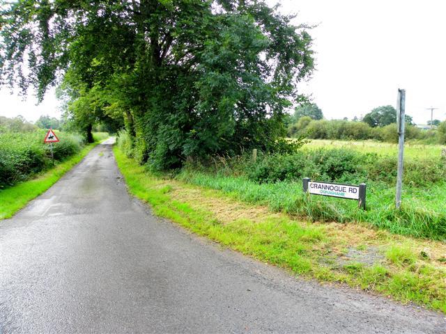 Crannoge Road, Donaghanie