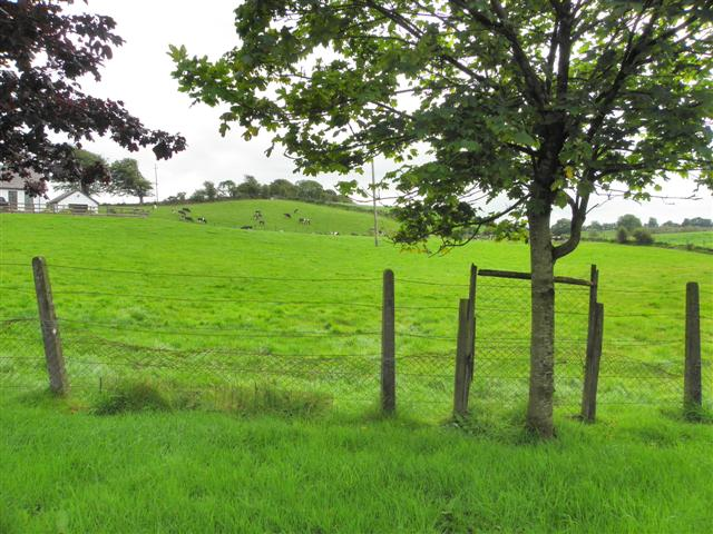 Donaghanie Townland