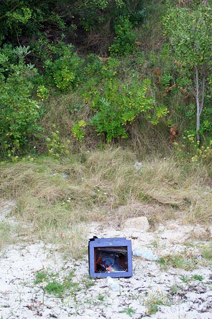 Dell monitor on Dropnose beach
