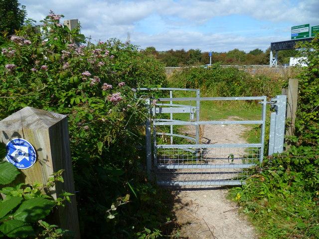 The Solent Way (311)