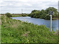 SK7856 : River Trent near South Muskham  by Alan Murray-Rust