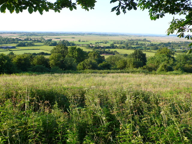 View over West Sedgemoor