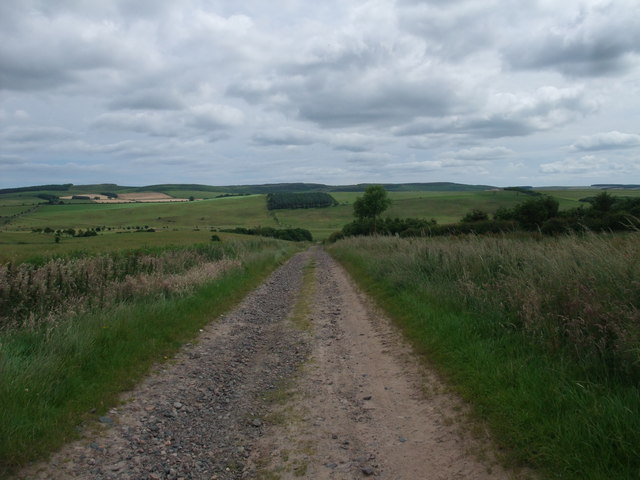 St Cuthbert's Way (new route) heading towards the valley of Hetton Burn