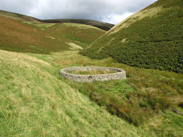 Sheepfold (stell) in the valley of the Trows Burn