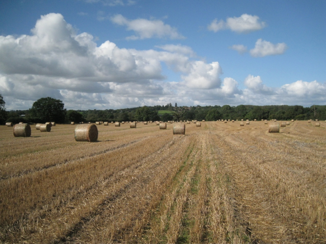 Harvested wheatfield with a view to Tanworth-in-Arden