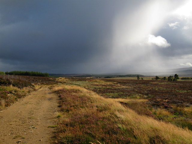 Looking South along moorland track near Meikle hill