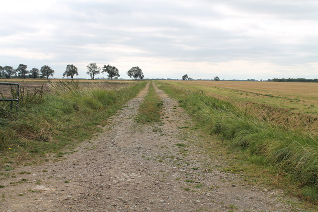Track on Haconby Fen