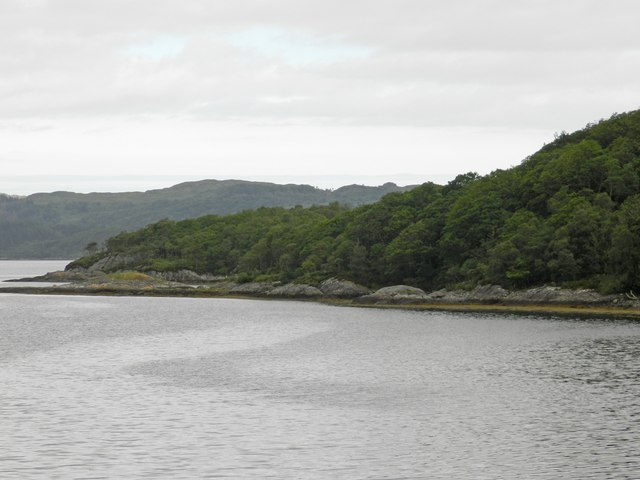 Wooded shoreline along Loch Sunart