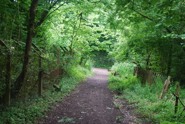 Bridleway, Jelleys Hollow