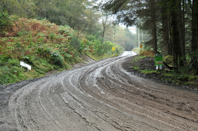 Forestry road at Ormidale