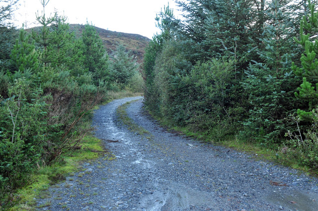 Forestry road near Melldalloch