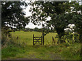 SJ9487 : Gate and Field by David Dixon