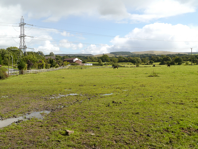Farmland, Higher Poynton