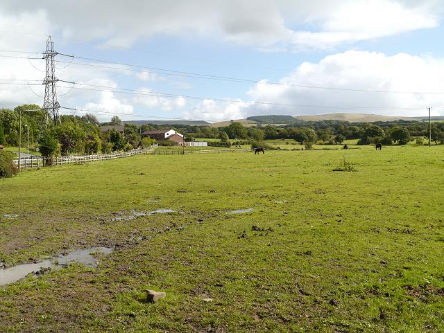 Farmland, Higher Poynton