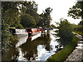 SJ9584 : Macclesfield Canal by David Dixon