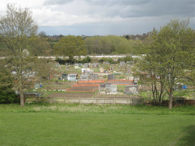 Potterton's Allotments from Millbank