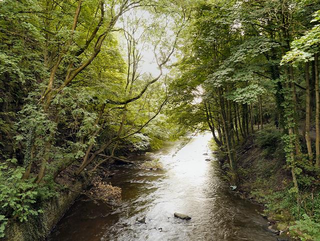 River Goyt, Torr Gorge