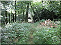 SU8089 : Rubble in Moorend Wood by don cload