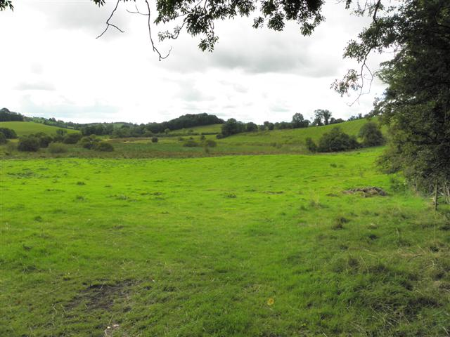 Cabragh Townland
