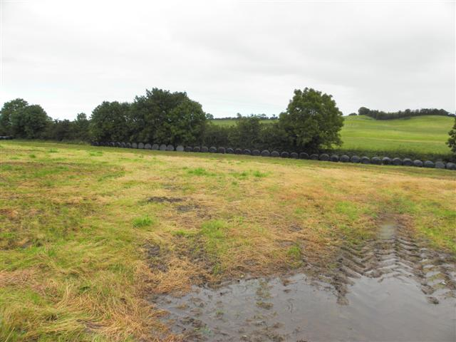 Carrickaderry Townland