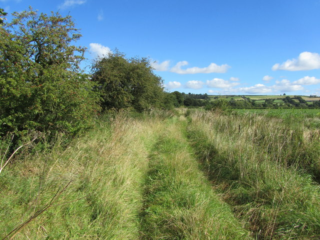 Ebor Way by The Fitts