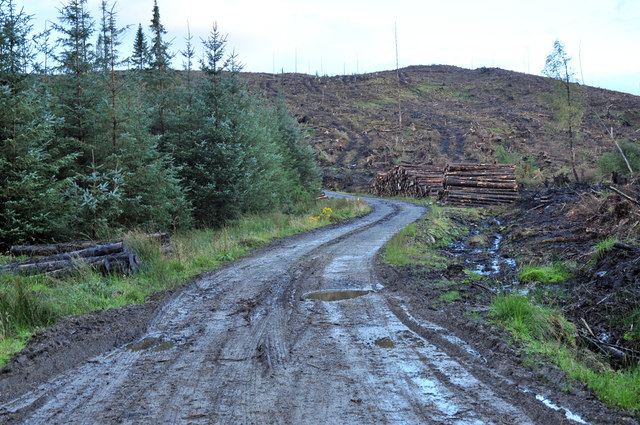 Forestry road in Strathlachlan Forest