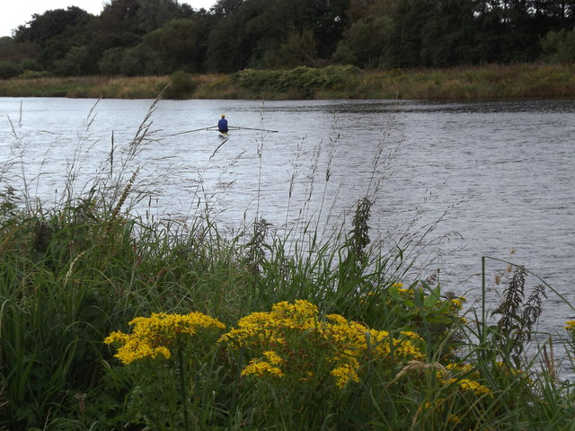 Sculler on the Dee