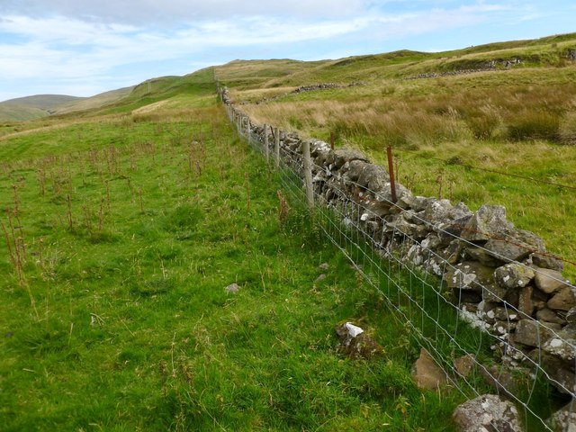 Dry-stone wall