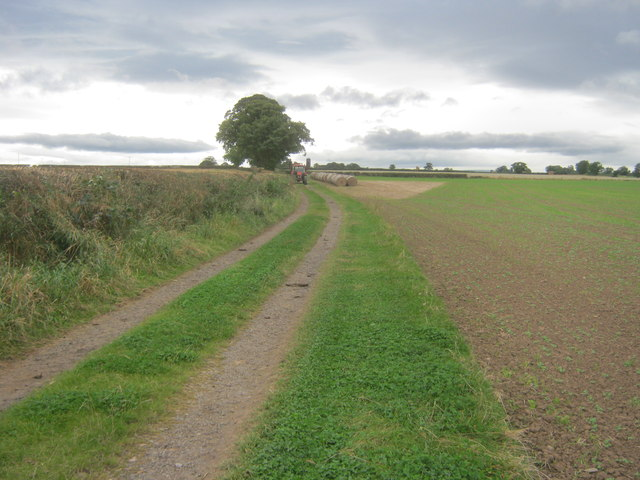 Farm track with bridleway status leading to Girsby Hall Farm