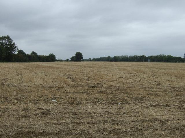 Farmland off Newborough Road