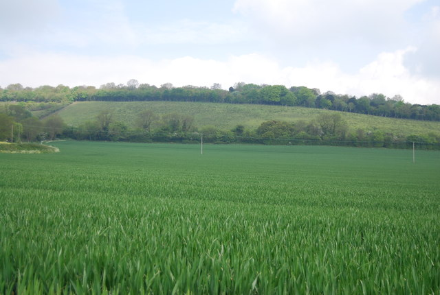 Farmland by Paddlesworth Rd