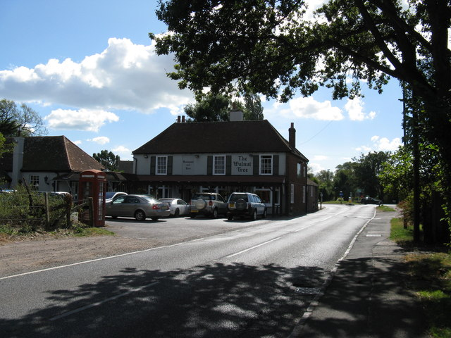 The Walnut Tree Runcton