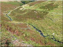 SD9921 : Sheep fold, Turvin Clough by Humphrey Bolton