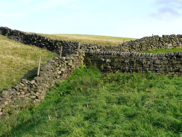 Walls near Trimming Dale
