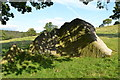 SK2671 : Chatsworth Estate - The Jubilee Rock by Neil Theasby