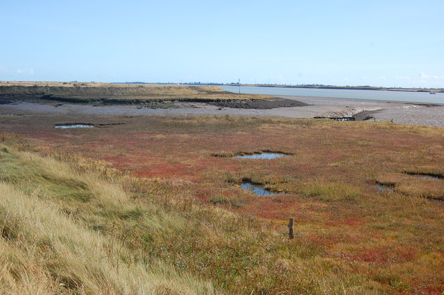 Salt-marsh south of  Burnham Wick
