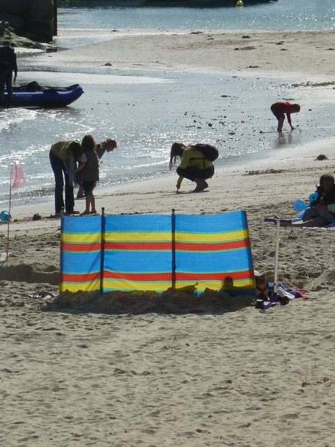 A splash of colour - Lyme Regis