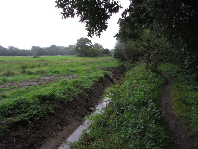 Field drain and footpath near Teigngrace