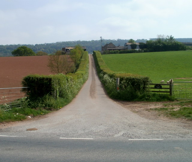 Entrance lane to Longstone Farm near Mitchel Troy