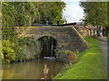 SJ9688 : Peak Forest Canal, Bridge at Lock#15 by David Dixon