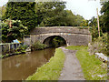 SJ9686 : Bridge#21, Peak Forest Canal by David Dixon