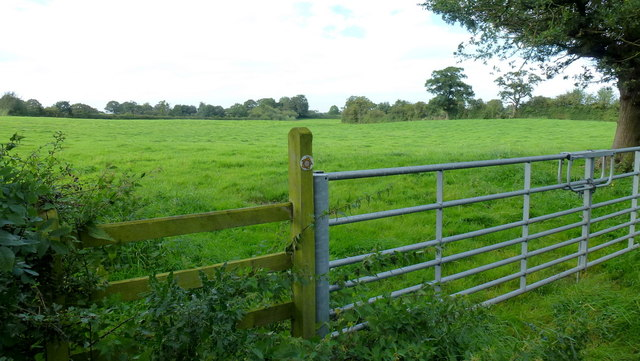 New gate and stile