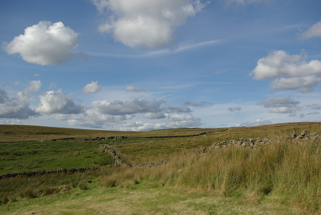 Fields & moorland east of Quarter Farm